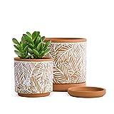 D'vine Ceramic Planter Pot