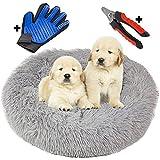 Thrasto Cama para Perros pequeños y Gatos (60cm), Cama antiestres y Lavable. con Guante quitapelos masajeador y cortauñas para Mascotas