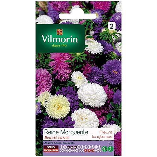 Vilmorin - Sachet graines Reine Marguerite Beauté variée