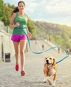 PETBABA Laisse Chien Mains Libres, Réglable Réfléchissant Élastique Jogging Courir Laisse de Dressage pour Chien