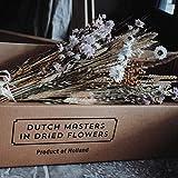 Dutch Masters in Dried Flowers Trockenblumenstrauß Creamy Pastel   EIN Hingucker in jeder Vase   Trockenblumen und Trockengräser Pastellfarben   65 cm   Deko Blumenstrauß - 7