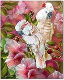 Bougimal Malen Nach Zahlen Erwachsene, Schönes Papagei Bild mit Rahmen 40 x 50 cm