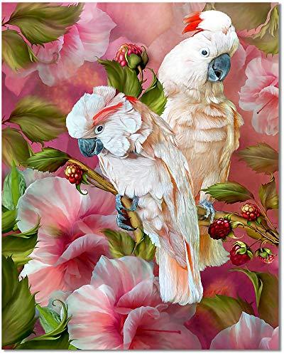 Bougimal Pintar por Numeros Adultos, DIY Pintura por Números Loro sin Marco de 40 X 50 cm
