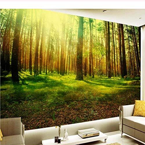 Paisaje natural Sun Shining 3D HD Gran mural de la pared Bosque Photo Wallpaper Sala de estar Sala de estar Paisaje Mejoras para el hogar Wall Wallpaper-200X140CM QThxqa