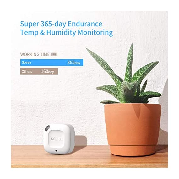 """Govee Hygrometer Thermometer, Wireless Thermometer, Mini Bluetooth Humidity Sensor with Notification Alert, Data Storage… 4 Smart App Control: Easily monitor temperature and humidity in real-time on the app. 328ft connecting distance (no obstacles) allows you to quickly get data remotely from anywhere in your home. (Not WiFi Version) Accuracy: With a built-in Swiss-made sensor, the temperature is accurate to ±0.54°F and humidity is ±3%RH. Enjoy precise data from the hygrometer thermometer every 2 seconds. Data Storage & Export: Featuring 20-day on-board data storage, you can get recent temp & humidity records through curve graph. Press """"Export Data as CSV"""" on the app to export the last 2 years data to your phone."""