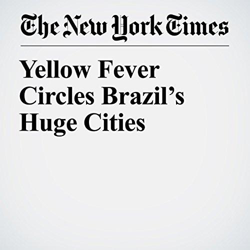 Yellow Fever Circles Brazil's Huge Cities copertina