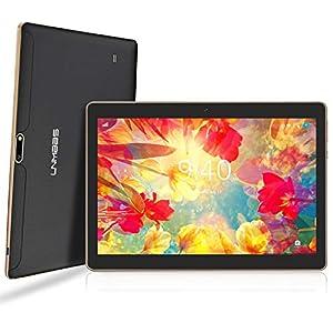 LNMBBS Android 9.0 Tablet de 10'' con WiFi 4GB de RAM y 64 GB de Memoria Tablet PC Procesador de Cuatro núcleos y Dobles Ranuras SIM y una Ranura TF Cámara GPS OTG (Negro)