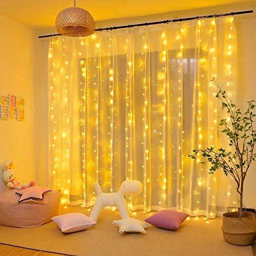 DANGZW LED Lichtervorhang, 3M × 3M 300 LEDs USB Lichterkettenvorhang Wasserdichte LED Lichterkette mit Fernbedienung, 8 Modi String Light für Weihnachten, Hochzeit, Party, Schlafzimmer Deko (Warmweiß)