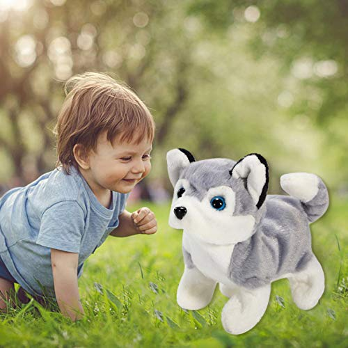 IGETELY Teddy Robot Dog Realistic, Lifelike Stuffed Interactive Pet Toy, Walking Barking Wagging Tail Lucky Puppy Pet Dog Toy Companion Pet Dog for Baby Kids