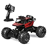 INTEY RC Car for Kids and Adults, Remote Control Car 2.4Ghz 4WD 1:12...