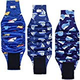 Grecle Premium Male Dog Wraps- High Absorbency Male Dog Diapers (Pack of 3)- Washable Belly Band for Male Dogs Incontinence and Puppy Training (Sailboat, M)