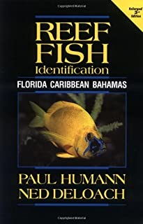 Reef Fish Identification: Florida, Caribbean, Bahamas 3rd edition by Paul Humann, Ned DeLoach (2002) Paperback