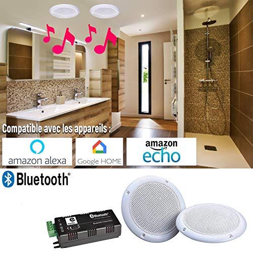e Audio Pack Lautsprecherset Wasserdicht Deckenlautsprecher + Verstärker 80 W – Bluetooth – kompatibel mit Alexa, Amazon Echo etc.