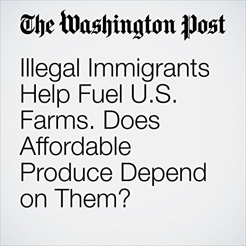 Illegal Immigrants Help Fuel U.S. Farms. Does Affordable Produce Depend on Them? copertina