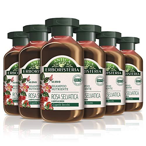 Antica Erboristeria Shampoo Nutriente Rosa Selvatica e Mirtillo Rosso, Shampoo per Capelli Secchi, con Ingredienti Naturali, 6 pezzi x 250 ml