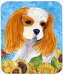 Caroline's Treasures Mouse/Hot Pad/Trivet Cavalier Spaniel (SS4161MP) [Amazon/Cossac Planner]