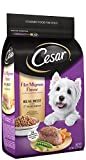 CESAR Filet Mignon Flavor With Spring Vegetables Dry Small Breed Dog...