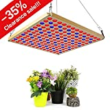 TOPLANET Lampara de Cultivo 45W LED para Plantas Grow Light 169pcs LED Azul Rojo para Interior/Invernadero/Hydroponic Planta Crecimiento