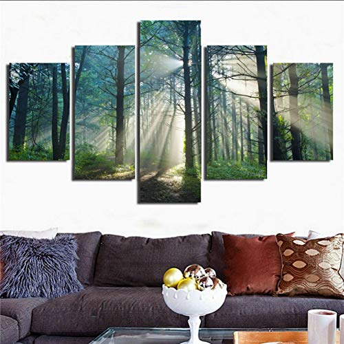 KGKBH 5 Pinturas consecutivas Impresión en Lienzo Arte de la Pared Decoración para el hogar Imágenes Impresas en HD 5 Paneles de bosques solares Cartel de árboles de paisajes Naturales