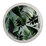 Juego de 4 pomos redondos para puerta de armario, con tornillo, para cocina, baño, dormitorio, planta exótica de hojas verdes
