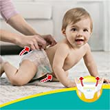 Pampers Premium Protection Pants, Gr. 6, 15+ kg, Monatsbox, 1er Pack (1 x 116 Stück) - 6