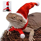 Bearded Dragon Santa Hat for Lizard with Scarf Christmas Costume Clothing Set Xmas Gift Clothes Outfit Great for Outdoor Halloween,Holiday,Party,Photos (Red)