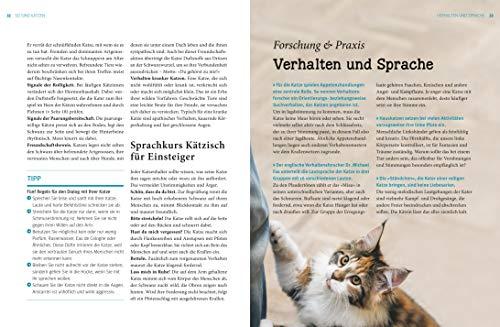 Praxishandbuch Katzen - 5
