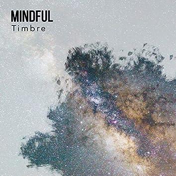Mindful Timbre, Vol. 2