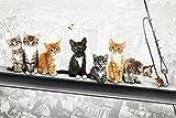 Katzen auf Stahlträger - Poster - New York Kittens +
