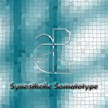 Synesthetic Somatotype
