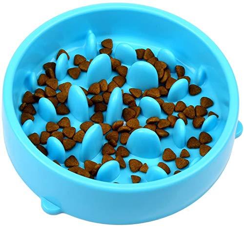 AOI Comedero para Perros Consumo Lento de Mascotas Tazón de Fuente Ecológico Duradero No tóxico Evitar Asfixia Tazón de diseño Saludable para Perro Mascota 20 CM (Azul)