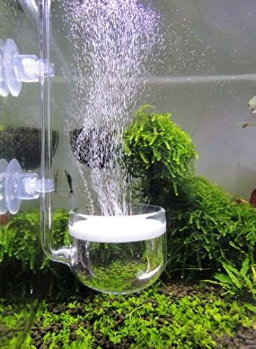 JARDLI Music Glass CO2 Diffuser for Aquarium Plant (2'' for Tank Beyond 75 gallons)