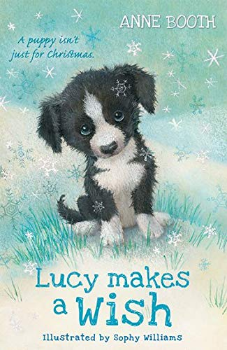 Lucy Makes a Wish