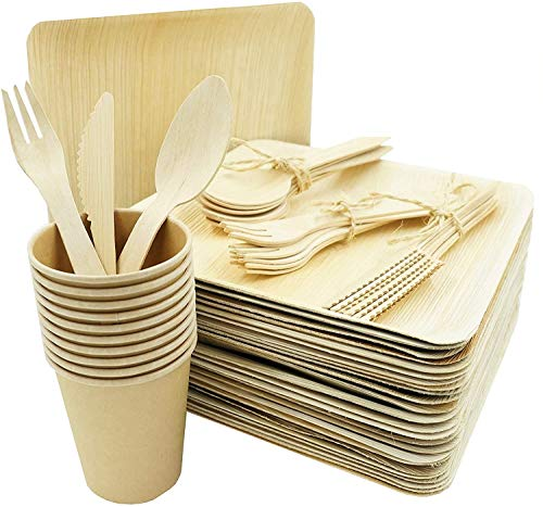 Bio Wary - Plato desechable biodegradable y compostable, incluye 25 platos desechables...