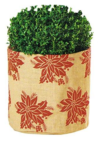 Florabest® Planten antivries - vorstbeschermkap/pot X-Large Bloempot kerstster