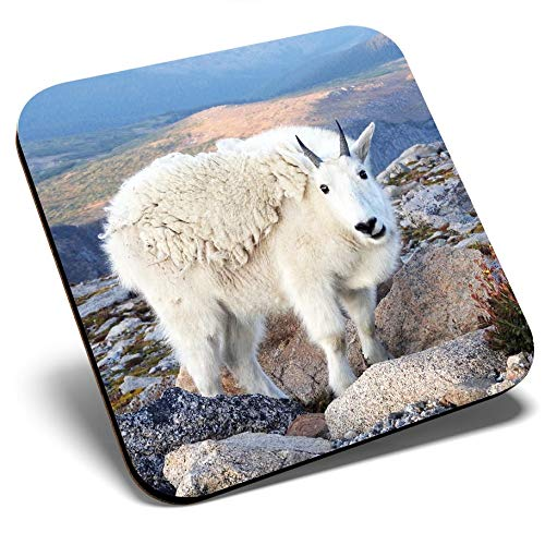 Posavasos cuadrados con diseño de cabra de montaña, glaciar de montaña, calidad brillante, protección de mesa para cualquier tipo de mesa #16568
