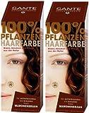 Sante BIO Haarfärbemittel maronenbraun 2 x 100 g Doppelpackung pflanzlich schonend Haare Tönung...