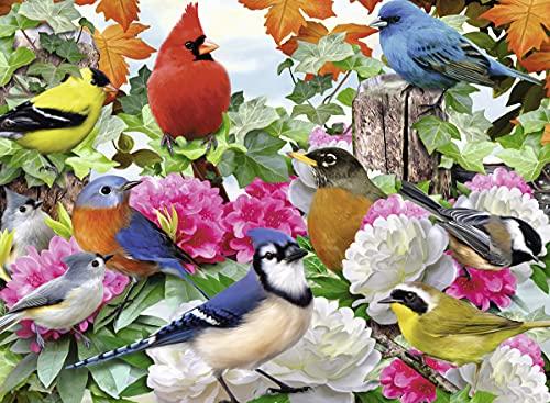 Ravensburger Garden Birds (500 Piece)