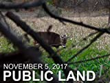 November 5 - Public Land: Decoy Encounter from the Ground