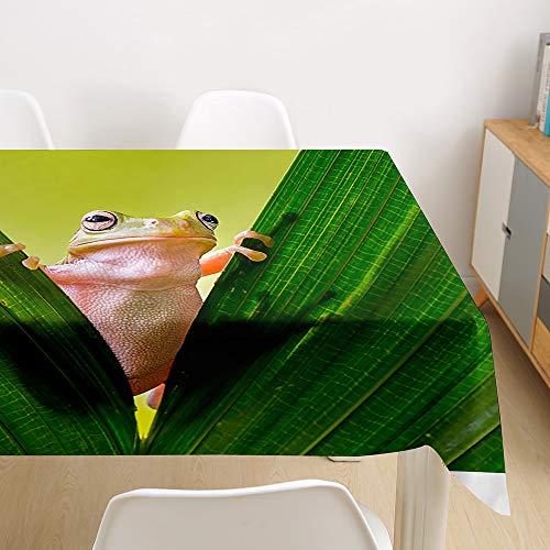 Tischdecke Abwaschbar, Morbuy 3D Tier Tischtuch Rechteckig Tischwäsche Gartentischdecke Outdoor Tischdekoration Wasserdicht Polyester Ölfest Pflegeleicht (Frosch,60x60cm)
