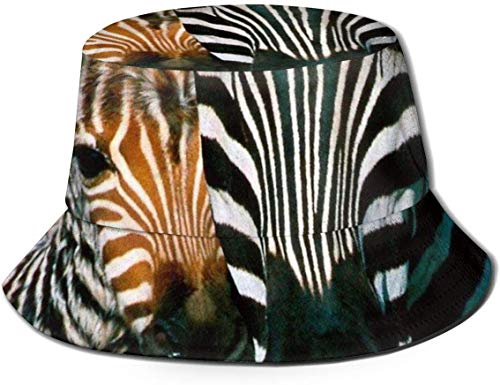 Sombreros de Cubo Transpirables con Parte Superior Plana Unisex China Dragón Tigre Tai Chi Sombrero de Cubo Sombrero de Pescador de Verano-Caballo de Cebra Diseño Animal-Talla única
