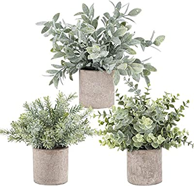 Der Rose 3 Pack Mini Potted Fake Plants Artificial Plastic Eucalyptus Plants for Home Office Desk Room Decoration