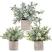 #LightningDeal Der Rose 3 Pack Mini Potted Fake Plants Artificial Plastic Eucalyptus Plants for Home Office Desk Room Decoration