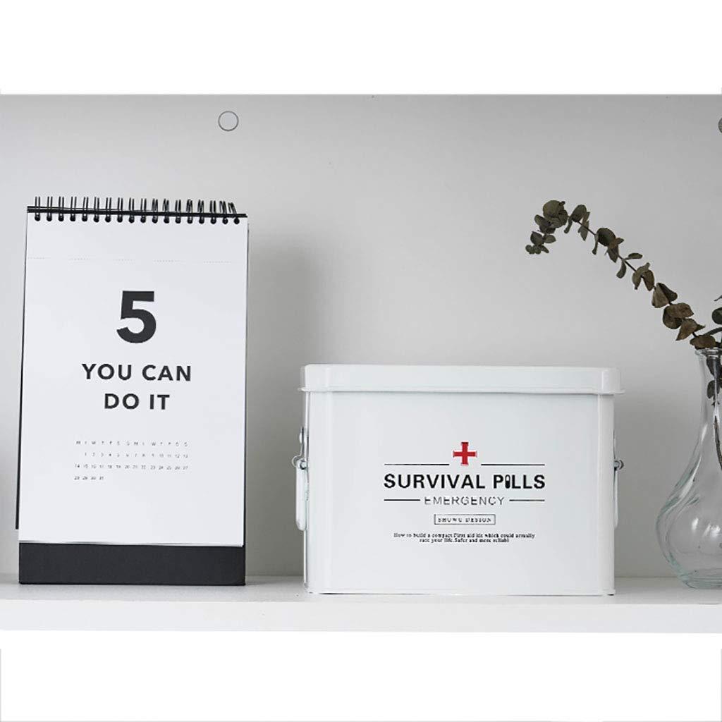 AYHa Caja de almacenamiento de la medicina con cerradura, botiquín de primeros auxilios de metal con asas laterales, superior desmontable bandeja de la caja clave para las píldoras, medicamentos con: Amazon.es: Bricolaje