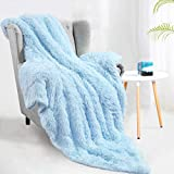 Terrug Soft Shaggy Fuzzy Throw Blanket - Fluffy Snuggly Faux Fur Blankets - Warm Cozy Plush Sherpa Blanket for Couch Sofa Bed Photo Props Home Decor,(60x50 Inches) Sky Blue