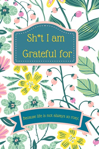 Shit I am Grateful for:Create a habit of Gratitude because life is not always so rosy| Practice Gratitude | 5 minutes a Day | Pr