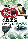 日本の珍鳥 映像図鑑 野鳥たちとの奇跡の遭遇[SDA-92][DVD]