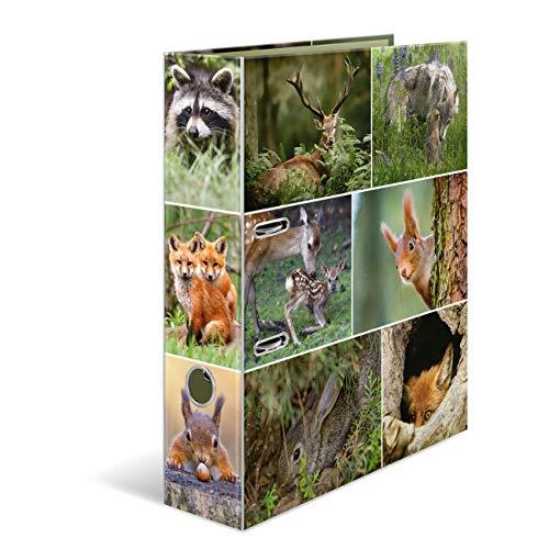 HERMA 7202 Motiv-Ordner DIN A4 Animals Waldtiere, 7 cm breit aus stabilem Karton mit Tier-Motiv Innendruck, Ringordner, Aktenordner, Briefordner, 1 Ordner