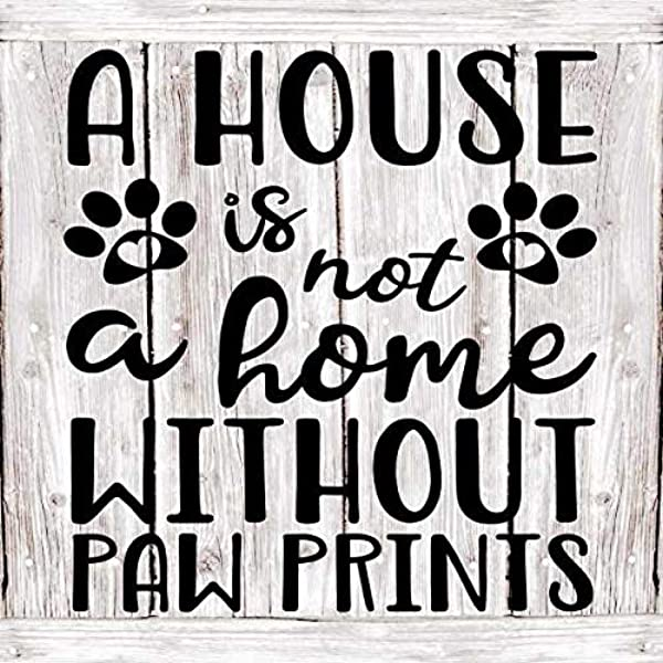 Chico Creek Signs A House Is Not A Home Pets Rustic Farmhouse Style White Wood Sign Wall D Cor Gift 8 X 8 Wood Sign B3 08080001066
