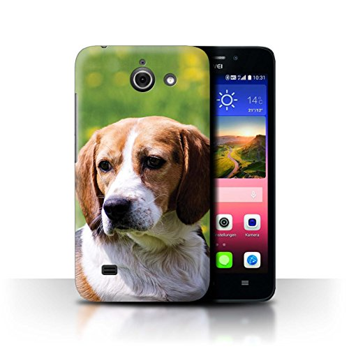Hülle Für Huawei Ascend Y550 LTE H&/Eckzahn Rassen Beagle Design Transparent Ultra Dünn Klar Hart Schutz Handyhülle Hülle